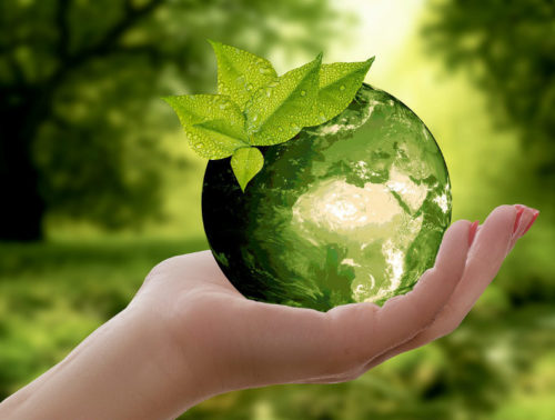 Tutti parlano di sostenibilità